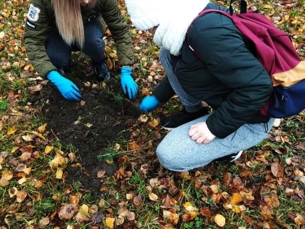 Для студентов организовали тренинг об экологическом добровольчестве